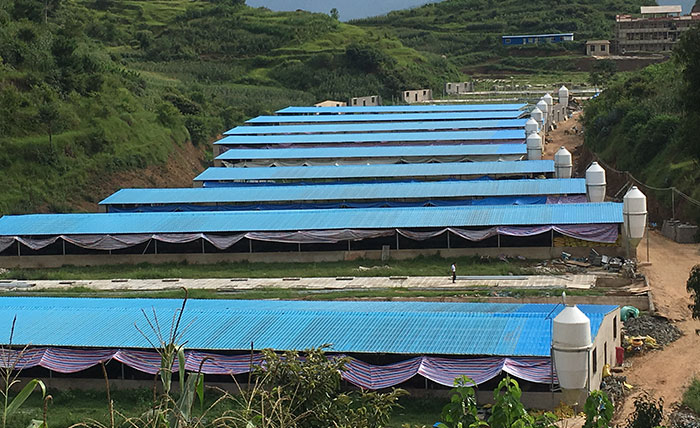 light-weight lightweight roof tiles for sheds sheet factory price for connection-15